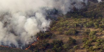 A bushfire burning through scrub, with billowing smoke